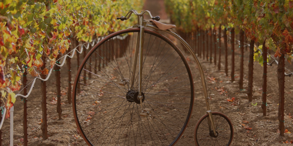 dutcher winery4